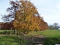 Oud-Valkenburg, Kasteel Schaloen (12).jpg