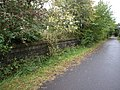 Overgrown Platform, Stafford Common Station - geograph.org.uk - 987921.jpg