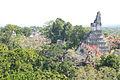 Overview Tikal.jpg
