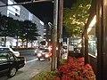 PARCO付近 - panoramio.jpg