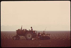 Oxnard Plain - Oxnard Plain, 1975