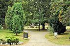 PL - Mielec - park Oborskich - Kroton 029.JPG