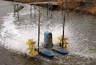 Water aeration - A one-horsepower paddlewheel aerator. The splashing may increase the evaporation rate of the water and thus increase the salinity of the water body.