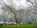 Park istanbul.JPG