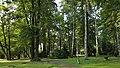 Park w Wojniczu (fot. 3).jpg