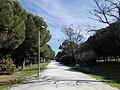 Parque Infanta Elena (Sevilla) 29.jpg