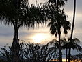 Patrick Nouhailler visiting Laguna Beach 12-29-2009 2-30-27 AM (4265713935).jpg