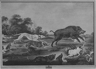Wildschweinhetze (Kopie nach)