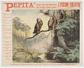 Pepita - Weir Collection.jpg