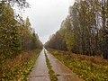 Permskiy r-n, Permskiy kray, Russia - panoramio (736).jpg
