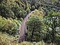 Perth to Inverness railway line on Killiecrankie Viaduct - geograph.org.uk - 1588238.jpg