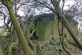 Pillbox near Woolaston - geograph.org.uk - 740077.jpg