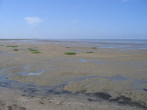Lower Saxon Wadden Sea National Park - The Pilsumer Watt from the Leyhörn peninsula, East Frisia