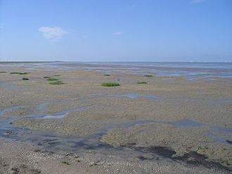 Wadden Sea - The mudflats of the Pilsumer Watt near Greetsiel, Germany