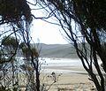 Playa de Abtao entre árboles.jpg