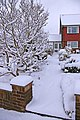 Plenty of snow in London N14 - geograph.org.uk - 1148231.jpg