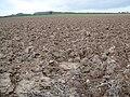 Plough, Lower Barnsley Farm - geograph.org.uk - 1590633.jpg