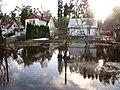 Pludi druvciema 2011 - panoramio (33).jpg