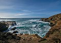 Point Lobos State Natural Reserve 1 18 19 (33028331258).jpg
