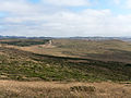 Point Reyes Marshall Trail 1.jpg