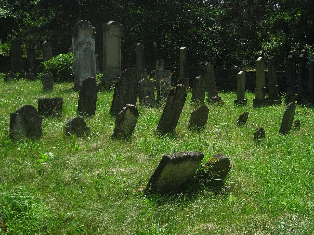 Police (okres Třebíč) - židovský hřbitov (3).JPG