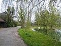 Pond, Berwick Berners Hall near Abbess Roding - geograph.org.uk - 382312.jpg