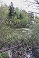 Pond near Meshkovo 03.jpg
