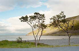 Porsanger fjord.jpg