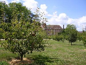 Petites écoles de Port-Royal - Image: Port Royal des Champs Vergers