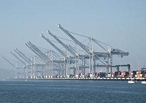 Port of Oakland - Cranes in the Port of Oakland