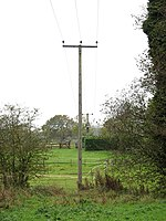 Power line to houses in Kirstead Ling - geograph.org.uk - 1570663.jpg