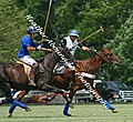 Practice Polo at the Kentucky Horsepark (2667751092).jpg