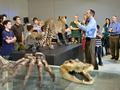 Predators at the Biblical Museum of Natural History.png