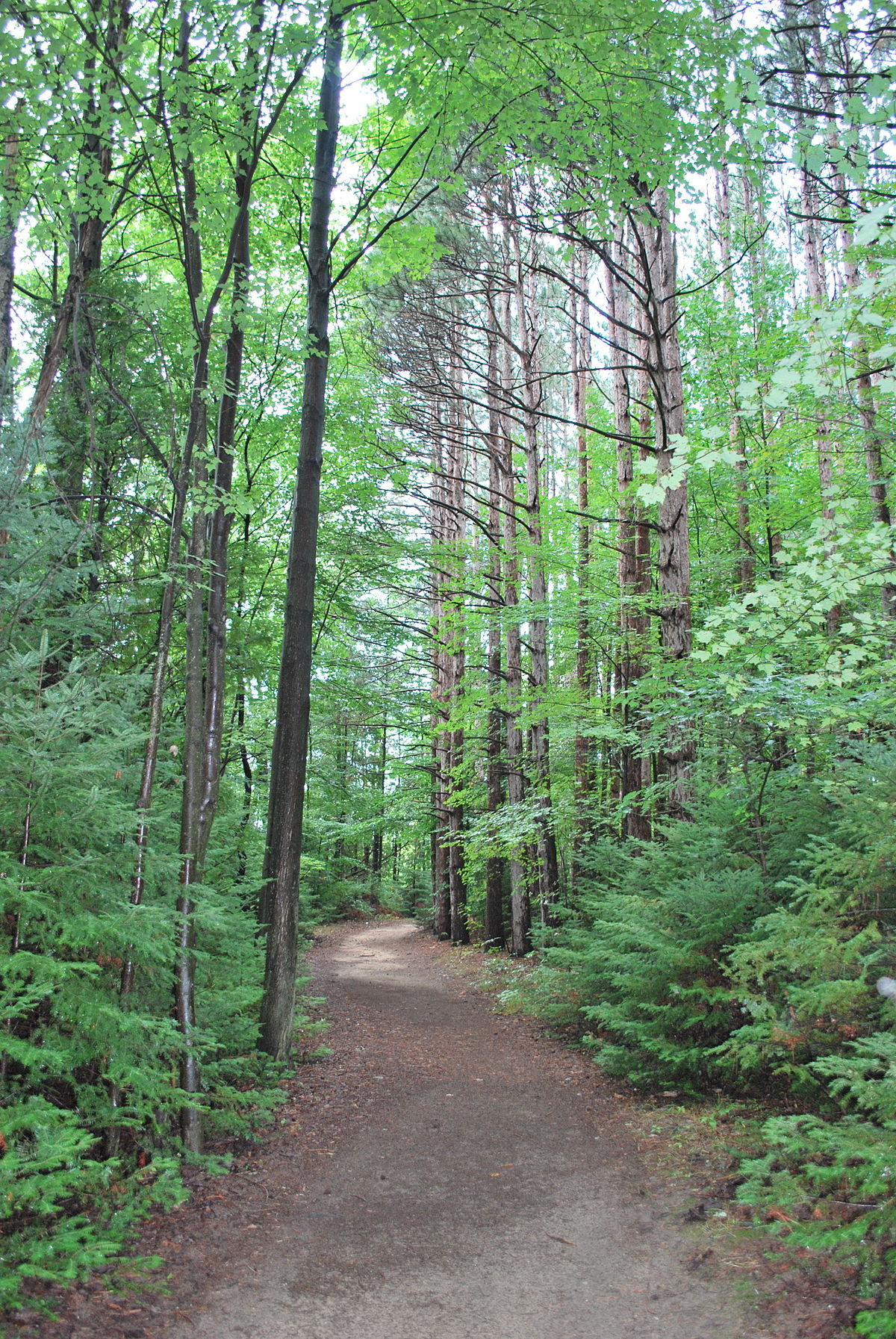 Proud Lake Recreation Area - Wikipedia