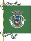Flag of Cinfães