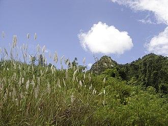 Florida, Puerto Rico - Image: Puerto Rico 003