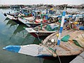 Qatar, Al Khor (16), Dhows in the harbour.JPG