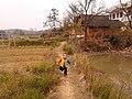 Qidong, Hengyang, Hunan, China - panoramio.jpg