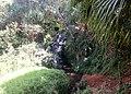 Queen's Bath Kauai - panoramio (15).jpg