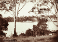 Queensland State Archives 2197 HMQ Gunboat Gayundah on the Brisbane River 1898.png