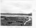 Queensland State Archives 6550 Reclamation at Tallebudgera July 1959.png