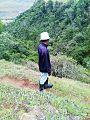 Qumbu Forest.jpg