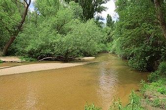 Río Adaja 2.jpg
