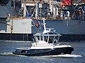 RT Borkum (tugboat, 2017) ENI 02336874, Botlek, Port of Rotterdam pic1.JPG