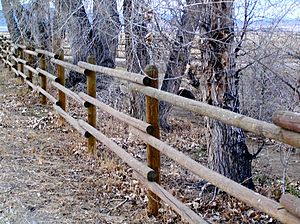 Agricultural fencing - A sturdy and well-made wooden post and rail fence