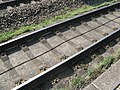 Rails on slab track Rheda Wiedenbrueck1.jpg