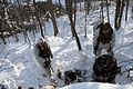 Recon Marines train for the cold (4312276286).jpg