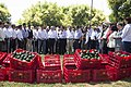 Reconocimiento al Programa de Producción y exportación del Aguacate.jpg