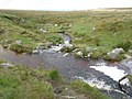 Red-a-ven Brook - geograph.org.uk - 1424684.jpg