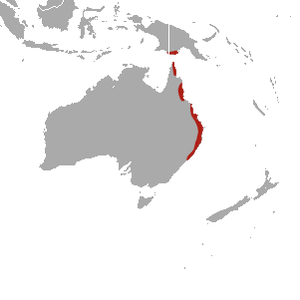Red-legged Pademelon area.png